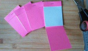 Pink Machbox notebooks
